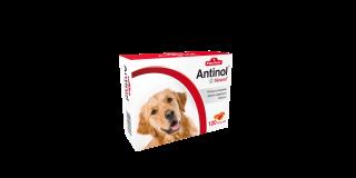 Antinol® Sizarol PIES 120 kapsułek